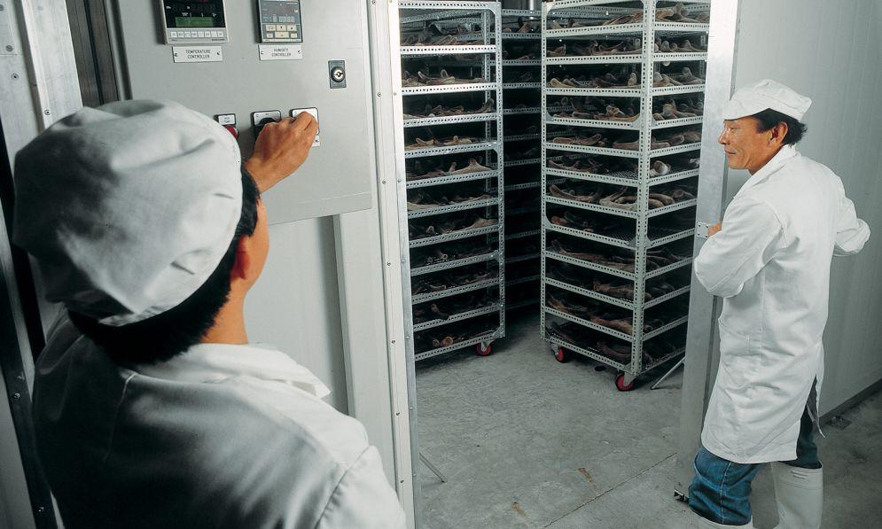 Workers opening door to velvet storage room